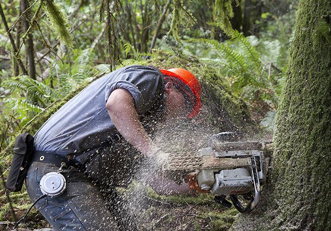 Student Logging Training Program